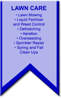 Your Lawn Will Look Better Than It Ever Has Blue Ribbon S Experts Give You A That Neighbors Envy